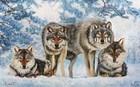 Вольные сыны леса